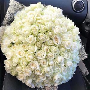 Букет из белой 101 кенийской розы