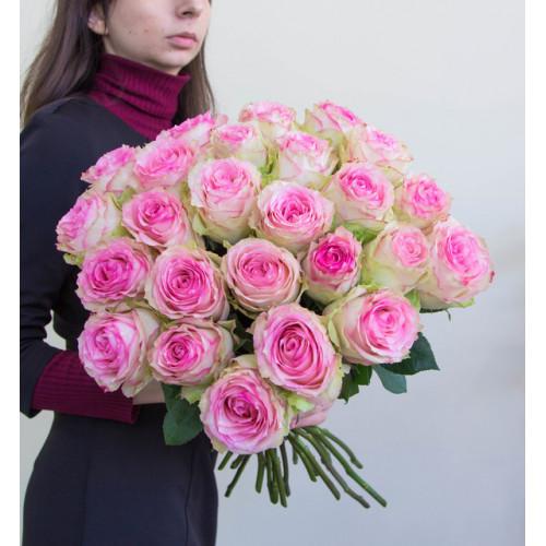 Букет из 25 нежных эквадорских роз