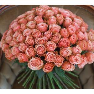 Букет из 101 розовой эквадорской розы